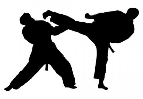 ABO-MS firma convênio que oferece desconto em aulas de artes marciais